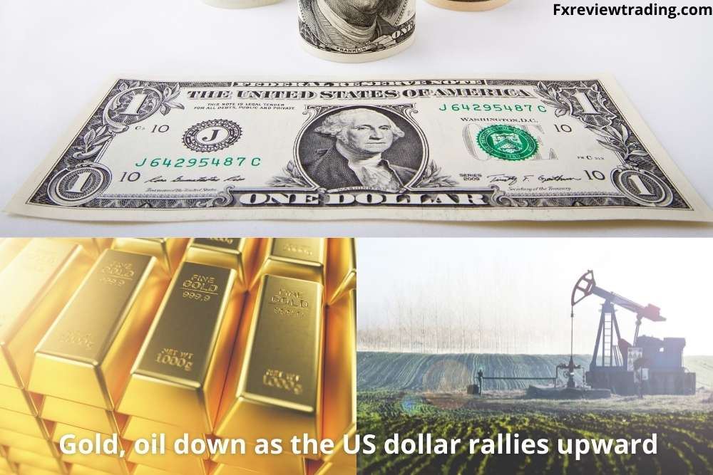 Gold and Oil down as the US dollar rallies upward